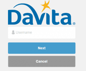 Forgot Davita Village Web Password